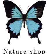 Nature-shop